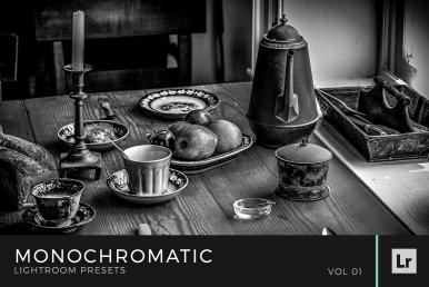 Monochromatic Lightroom Presets Volume 1