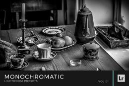 Monochromatic Lightroom Presets Volume 1